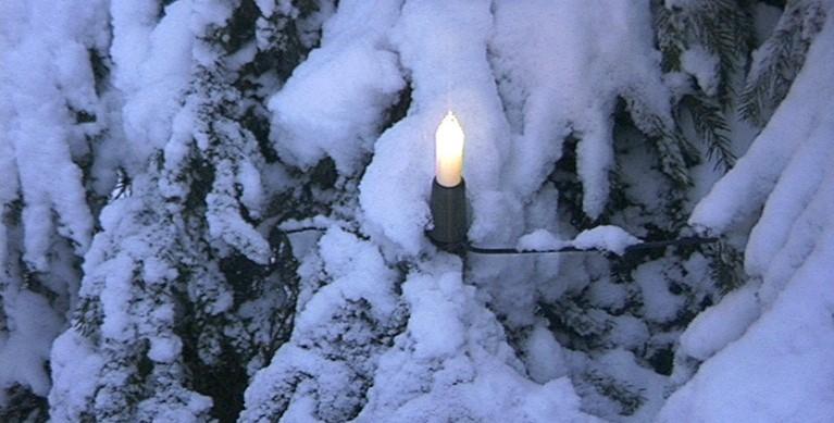 Kerze am verschneiten Weihnachtsbaum Dezember 1999 (c) Tobias Pinkel